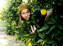 Pretty islam woman in orange grove smiling, real muslim girl che. Erful close up stock photography