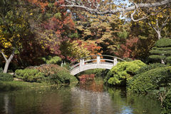 Pretty Japanese garden autumn Stock Photo