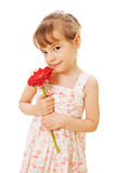 Pretty kid in sundress with red flower Royalty Free Stock Image