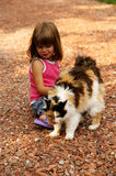 Pretty kitty. A young girl petting her kitty stock image