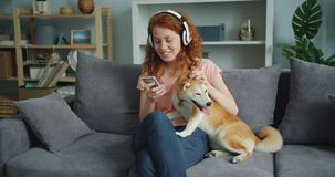 Pretty lady enjoying music in headphones using smartphone stroking dog at home. Pretty lady enjoying music in headphones using smartphone and stroking dog at stock footage