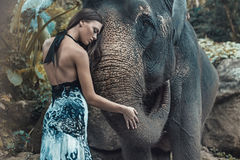 Pretty lady hugging a lovely indian elephant Royalty Free Stock Image