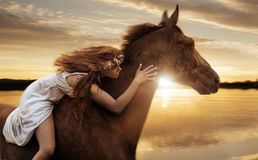 Pretty lady riding a horse by gallop Stock Image