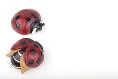 Pretty ladybugs Stock Photo
