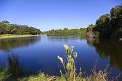 Pretty Lake Scene Stock Image