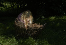 Pretty little blond child girl in the woods with a basket Royalty Free Stock Image