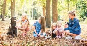 Little kids and girl sitting with dogs in a park. Pretty little blond kids and girl sitting with dogs in a sunshine autumn park stock photo