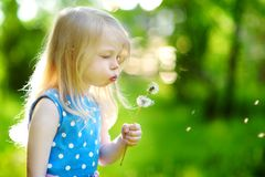 Pretty little blonde girl blowing off a dandelion Royalty Free Stock Photos