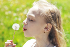 Pretty little blonde girl blowing off a dandelion Royalty Free Stock Images