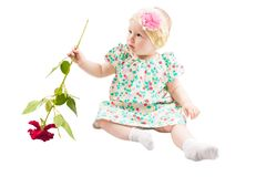 Pretty little child girl  with flower rose  isolated on white Royalty Free Stock Images