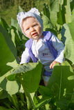 Pretty little child girl in leaves of burdock in park Stock Photography