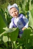 Pretty little child girl in leaves of burdock in park. Smiling pretty little child girl in leaves of burdock in park Stock Photography