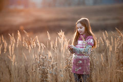 Pretty little girl in an autumn field Stock Images
