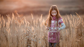 Pretty little girl in an autumn field royalty free stock photos