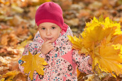 Pretty little girl with autumn leaves Royalty Free Stock Image