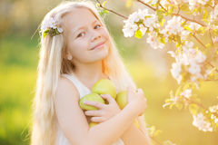 Pretty little girl in blooming apple tree garden. On beautiful spring day with basket of green apples Stock Photos