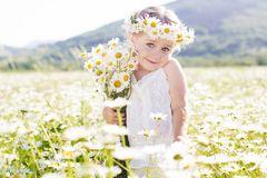 Pretty little girl with bouquet of chamomiles Stock Images