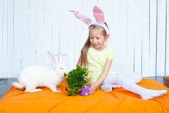 Pretty little girl feeding white rabbit Stock Photo