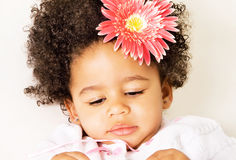 Pretty little girl with a flower royalty free stock photography