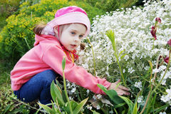 Pretty Little Girl in a Garden with White Flowers Royalty Free Stock Photography