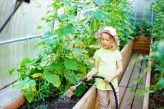 Pretty little girl gardener in uniform watering plants with garden hose in greenhouse stock photo