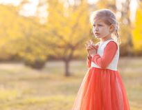 Pretty little girl on meadow Royalty Free Stock Images