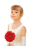 Pretty little girl with red flower Stock Image