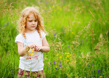 Pretty little girl in a summer field. Curly haired little girl out in a field of grass and wild flowers in the summer Stock Images