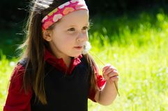 Pretty little girl in sunny meadow Royalty Free Stock Photos