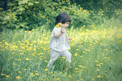 Pretty little girl walks in the park Royalty Free Stock Photos