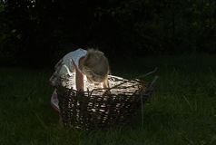Pretty little girl in the woods with a basket Stock Photography