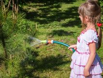 Pretty little girl 5 year old with long blond hair in lovelly white dress watering a small pine tree in the garden royalty free stock images