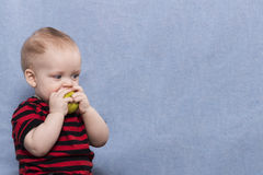 Pretty little kid eating big green apple royalty free stock photography