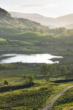 Pretty Little Langdale Lake and sunlit Trees and W Stock Image