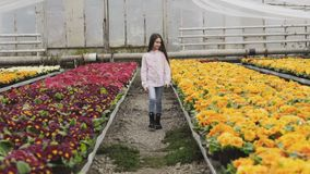 Pretty long-haired young girl walks in greenhouse with smile stock video footage