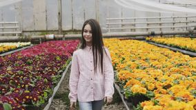 Pretty long-haired young girl walks in greenhouse with smile stock footage