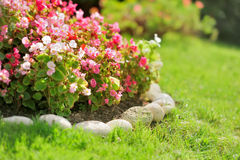 Pretty manicured flower garden Stock Photography