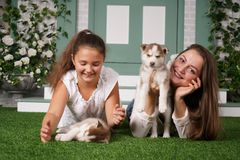 Pretty mom and cheerful daughter playing with two husky puppies on the grass stock photo