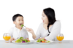 Pretty mother feeding her son on studio Stock Photography