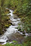 Pretty Mountain Creek in North Carolina in the Springtime stock image
