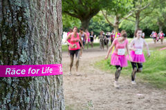 Pretty Muddy Race for Life Royalty Free Stock Photo