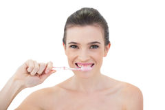 Pretty natural brown haired model brushing her teeth Stock Photography