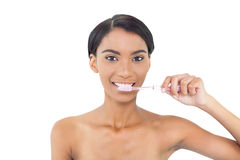 Pretty natural model using toothbrush Royalty Free Stock Photos