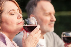 Pretty old loving couple is relaxing in the nature stock images