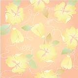 Pretty orange Floral in summer season flower for cute background Stock Image
