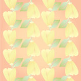 Pretty orange Floral in summer season flower for cute background Stock Images