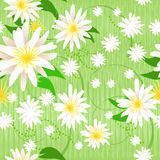 Pretty painted flowers seamless background Royalty Free Stock Photo