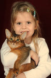 Pretty pair of kitten and child girl. Pretty girl five years with somali purebred kitten ruddy color, both looking at camera, girl is smiling Royalty Free Stock Images