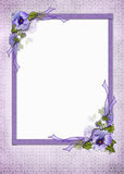 Pretty Pansy Frame Royalty Free Stock Photo