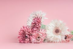 Free Pretty Pastel Flowers Bunch On Pink Stock Image - 116063631
